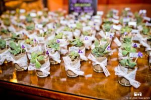 Unique Place Seating Card Ideas Seating Chart Wedding Ideas